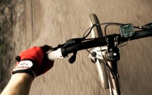 rul velosipeda
